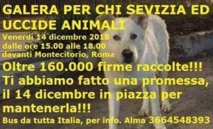 Uniti in nome di Angelo – Fonte: FB-Partito Animalista Europeo