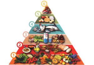piramide_alimentare