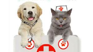 Soccorso animali domestici – Fonte: UNC
