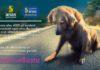 Locandina dell'iniziativa – Fonte: Lega Nazionale per la Difesa del Cane