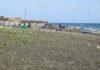 Campo di Mare