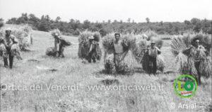 riforma agraria