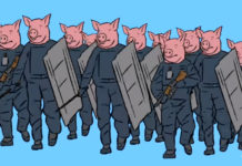 agenti come maiali