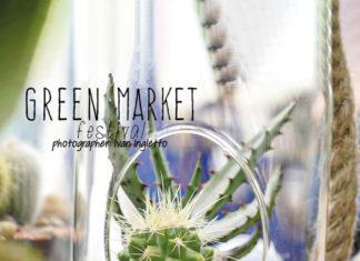 green market festival